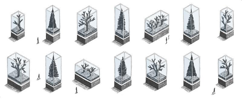 Ci mostra la natura in vetrina, la ribellione delle fronde che si rinchiudono in forme meticolose