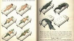 alcune_delle_illustrazioni_del_codex_seraphinianus_9799
