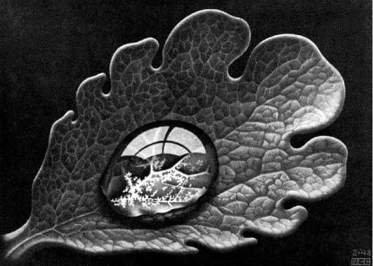 m_c_escher_selected_dewdrop