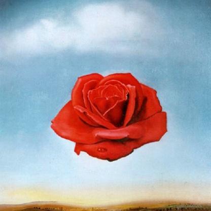 """""""Rosa Meditativa"""" di Dalì"""