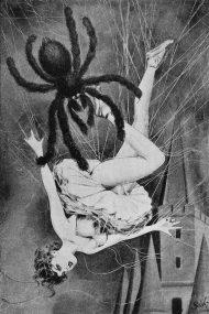 11.2 e raccapriccianti con i coprotagonisti delle opere, dai rettili dal sangue freddo, aracnidi pelosi e velenosi