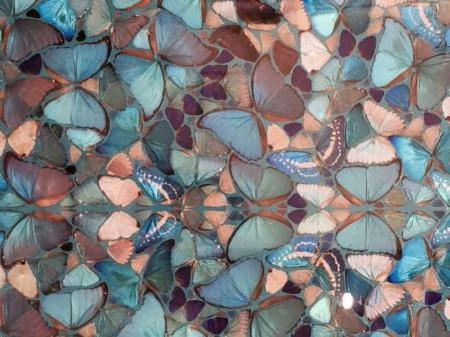 13-perchecc81-certi-pattern-sono-sempre-quelli-solo-che-non-ce-ne-rendiamo-conto-perchecc81-delle-conchiglie-possono-diventare-ali-di-farfalla.jpg