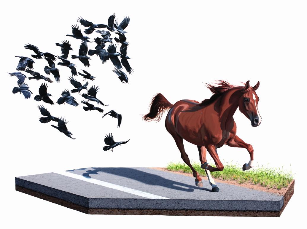 31.1 le tende e affacciarci sugli atteggiamenti bizzarri e ribelli che la natura compie a nostra insaputa, tramite l_evoluzione e l_adattamento animale ad un mondo non sempre ideale
