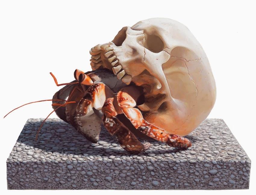 32 Ma Per queste creature non esiste il concetto di habitat ideale, habitat è solo vita e sopravvivenza.